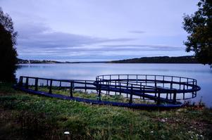 Wangensten fisk får tillstånd att 500 ton fisk per år utanför Hoverberg. Det är hälften av vad företaget hade ansökt om.