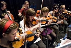 Stråkinslaget i folkhögskolans orkester som svarar för musiken till kvällens melodifestival.
