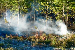Skogsbrand utanför Lillhärdal tidigare i somras som inte vara någon naturvårdsbränning.