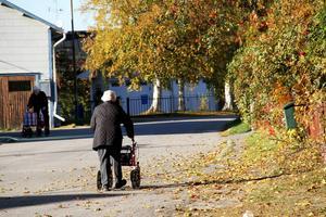Äldreomsorgen i Nordanstig är kostsam, verksamheterna klarar inte att hålla sig inom tilldelade ramar.