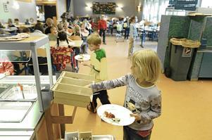 Vi uppmanar skolorna i Sundsvall att under höstterminen servera eleverna nyttig, klimatsmart och djurvänlig växtbaserad kost genom att ersätta dyra animalier med billiga baljväxter, skriver Jonas Paulsson, Köttfri måndag.