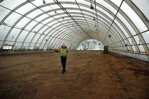 """TRÅKIGT. I 23 år har platschef Leif Kling jobbat i Brattfors. Nu stänger man växthusen och lägger ner verksamheten. """"Visst känns det jättekonstigt"""", säger han."""