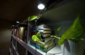 Jobba med punktbelysning så ljuset framhäver rätt saker. Foto: Pontus Lundahl/Scanpix