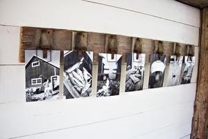 Råttfällor och en bräda har blivit en hållare för  fotografier från båthuset.