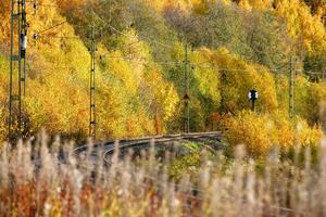 Rälsen slingrar sig mellan de gyllene löven hösten 2008.