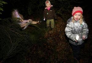 En skogsfru under en gran. Nästan naken ute i kalla natten. Tilda Dahl och Anne Ryden bara gapade åt spektaklet.  Foto: Håkan Luthman