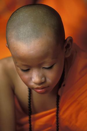 En nybliven munknovis i Mae Hong Son, Thailand. Bland shan, en av de folkgrupper som lever i nordvästra Thailand, är det sed att alla pojkar någon gång mellan åtta och fjorton års ålder blir munknoviser och tillbringar en månad i kloster för att lära sig om buddhismen.