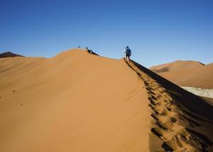 Den berömda Dune 45 är en av Namibias mest fotograferade sanddyner. Med sina 170 meter bjuder den på en uppskattad, men jobbig vandring mot toppen.   Foto: Jörgen Ulvsgärd