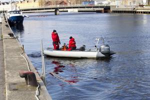 Personalen vid Kustbevakningen har sökt längs kanterna, under kajen och vid båtar utan resultat.