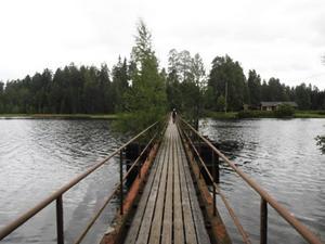 Det var befolkningen i trakten som under 1800–1900-talet, genom sitt idoga arbete i timmerskogen, med krökta ryggar, lade grunden till imperiet SCA, menar Bengt Brügge.