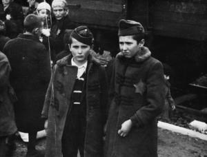 Barnen på bilden är Lili Jacobs bröder, Sril och Zelig. Båda dödades kort efter ankomsten till Auschwitz-Birkenau i maj 1944.