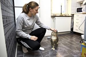 Johanna Holmbom förlorade sin katt Sessan för över tio år sedan. Häromdagen hittade hon katten – på soptippen.