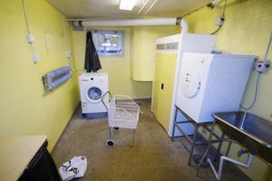 Tvättstugan på Hantverksvägen 6 har fått nya maskiner. Rolf Blomgren önskar att elektriciteten på vinden också skulle fixas.