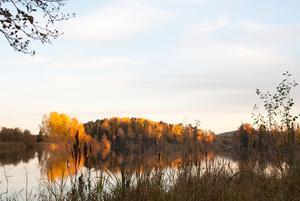 Hösten är kommen till Aspen.
