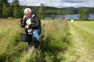 Vi tappar den levande landsbygden på grund av rovdjurspolitiken, menar Per-Olov Alderback som efter åtta år slutar med fäbodbruk.