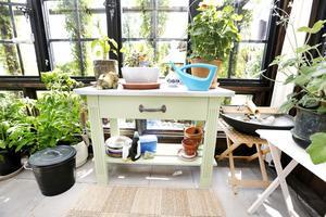 Inredning med både växter och möbler.