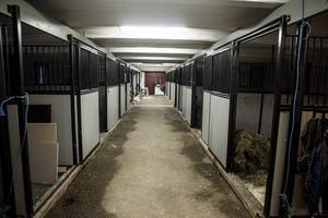 Stallet är snart färdigt. Totalt kommer det att bli elva boxar så att Caroline kan ta emot hästar för intensivvård.   – Jag har mina egna hästar på lösdrift så det här är mest till för de hästar som kommer hit, de som behöver vård eller till exempel travhästar som behöver vila från tävling.