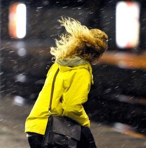 Blåsväder. Lekebergs kommunpolitiker ska under året bestämma sig om de vill förvandla blåst till vindkraft. arkivbild:Johan Nilsson/SCANPIX