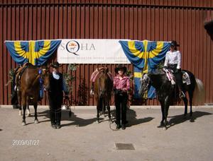 Westernryttrna hade fina framgångar på SM. Från vänster Agnetha Jonsson, Gnarp, med hästen Docs Biddy Buddy. I mitten Regina Schönborg, Vattlång, med hästen Invitation Dot Zip, och längst till höger Nina Norin, Enånger, med hästen Pure Prime Chocolate.