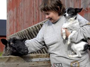 Anette Göransson med Norpan i famnen hälsar på fåret Lotta som föddes upp som flasklamm.