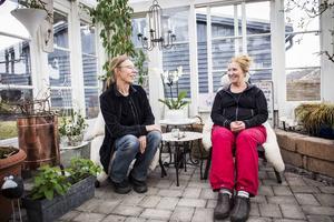 Väninnorna Ulla Westrin och Kerstin Lindeberg är hängivna växthusodlare. Ulla har sitt växthus i Stöde och Kerstin på villatomten i Skönsberg.