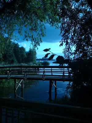 Jag skjutsade mina barn och deras kompisar till Framnäsbadet, ute på bron var det en så fin vy ut mot Mälaren med segelbåtar.