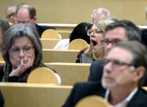 En fem timmar delvis sömning, delvis intensiv debatt föregick budgetbeslutet.