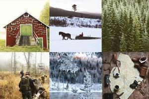 Med kameran fortsätter hon se bilder och det vackra i Jämtland. Med bilden i övre raden på mitten vann Sofia Ekenlund