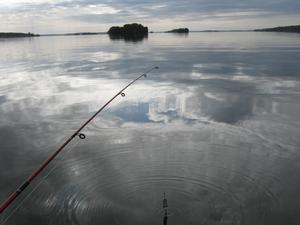 Det är inte fisken som behöver vara det viktiga vid fisket.