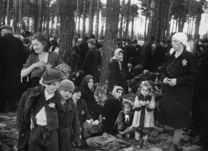 Kvinnor, barn och gamla väntar på att klä av sig i en skogsdunge 100 meter från en av gaskamrarna i förintelselägret Auschwitz–Birkenau. Därefter ska de gå in i det rum där de gasas ihjäl för att sedan kremeras i ugnarna i samma byggnad.