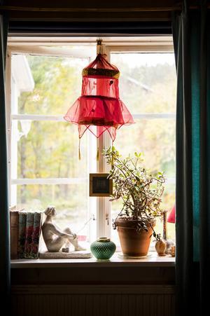 Vardagsrumsfönstret.