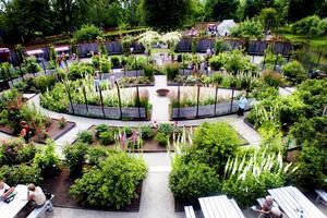 Företagare skulle kunna bidra med ett större driv vid Wij Trädgårdar, anser kommunens näringsidkare.