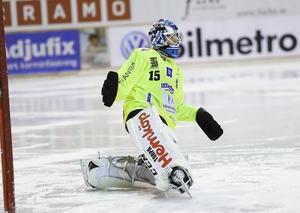 David Borvall gör sin andra säsong i IFK Vänersborg.