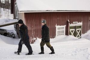 Håkan Lund och Randi Olofsson-Lund trivs bra i Almdalen och har än så länge inga planer på att lämna över gården till någon annan.   – Båda brinner för gården och att sköta den. Det finns säkert de som skulle göra det bättre eller annorlunda. Men vi gör det på vårt sätt, säger Håkan.