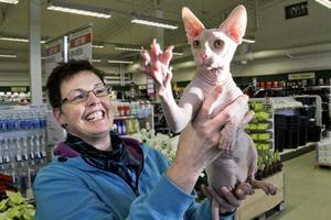Trots att nakenkatten Lillen inte har någon päls är han mjuk och go. Visst fryser han lättare än andra katter, men då kryper han bara in under filten en stund, berättar hans ägare Katarina Eklöf.