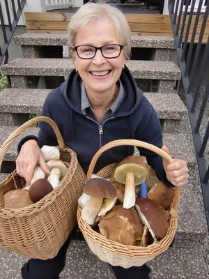 Visst fanns det gott om Karl-Johan i september. Barbro Sköld fyllde ett par korgar under en svamprunda och hon var ute i tid för masken hade inte angripit svampen.