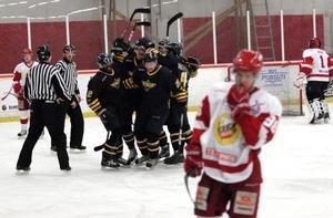 Ett tätt och smart Wings HC Arlanda vann rättvist Allettanmatchen mot Hedemora med 6–1.