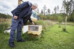 Gunnar Olsson visade hur en bikupa ser ut på insidan.