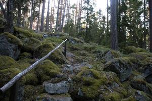 Här går stigen genom ett område med klapper av stora stenblock av den lokala graniten. Foto:Roland Berg
