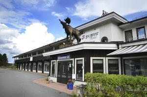 Big Moose hotel i Åsarna