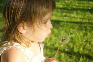Min lillasyster Nemesis blåser maskrosor!