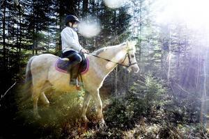 Milo Segemark på ponnyn Torben.