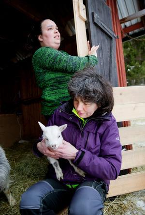 Alexandra Hussein och Liza Widenberg börjar dagen med att mata killingarna.