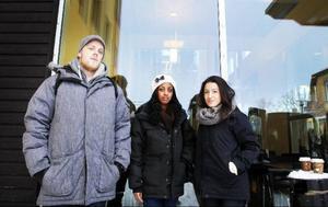 Simon Wallenberg, Deborah Gebru och Olivia Barsom har valt att inte vara med i studentkåren.