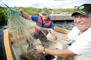 Leif Stockhaus och Erik Olnils från Bollnäs fiskevårdsförening är två av dem som hjälper till att lägga näten i sjön under provfiskningen.