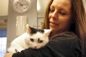 Katten Joppe var mager och rädd när han kom i somras. Nu är han hemmets kelgris och Monika Mattsson hoppas hitta ett bra hem åt honom.