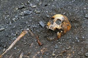 I det tredje, och sista skiktet ligger skeletten intakta.