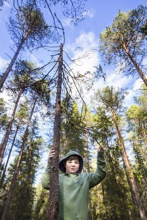 Centralskolan använder flitigt sin skolskog. Alla barn från förskoleklass till årskurs fem har kontinuerligt lektioner och lek i skogen på schemat.