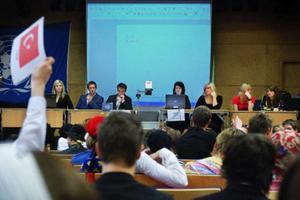 Ländernas företrädare begär ordet av ordföranden.  Foto: Joakim Rolandsson