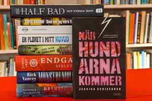 Varje år genomför Svenska barnboksinstitutet bokprovningen, en omfattande genomgång av alla barn- och ungdomsböcker som getts ut i Sverige.